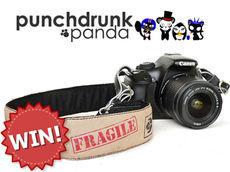 Punchdrunk Panda