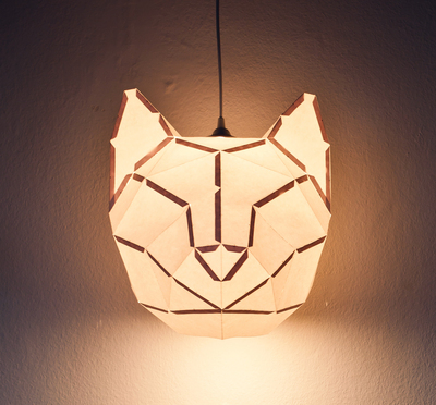 Medium_cat_light