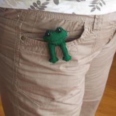 Pocket Pal Frog Plushie
