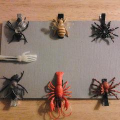 Plastic Bug Accessories