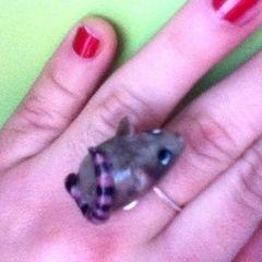 Plague Rat Ring