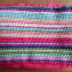 Stripey Camera Case
