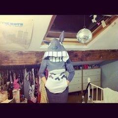 Totoro Costume/Hoodie