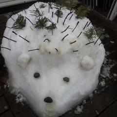 Snow Hedgehog :)