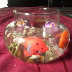 Diy: Fish Bowl You Never Need To Care For