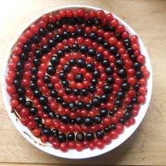 Currant And Vanilla Cheesecake