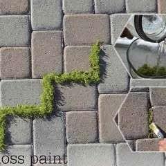 Moss Paint