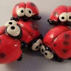Ladybug/Ladybird