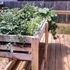 Easy How To Build A Counter Height Garden Planter