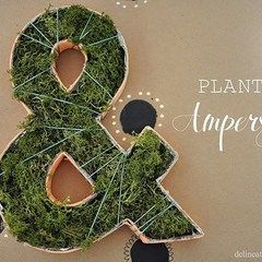Planted Ampersand