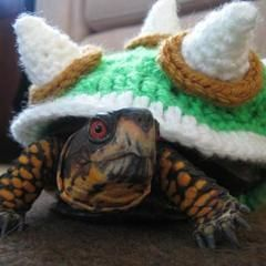 Bowser Sweater For A Tortoise