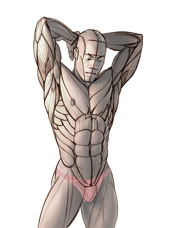 How To Draw And Shade The Human Torso · How To Make A