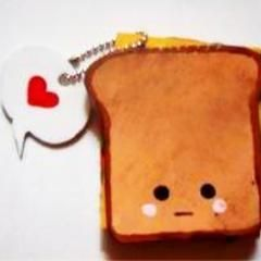 Ipod Sandwhich Cover