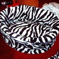 Zebra Cat Bed