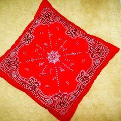 Bandana Pillow