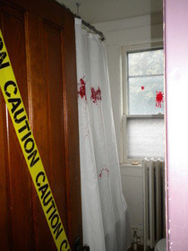 The Bloody Shower Curtain.