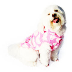 Clothes For Dogs
