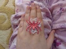 Pink Spider On A Lace Web Ring