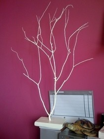 Jewelry Tree