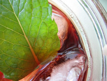 Iced Tea With Rose And Herbs