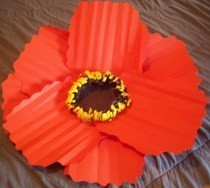Diy Paper Poppy Flowers