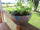 Freecycled Planters