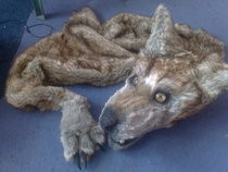 Games Day Project Pelt Update