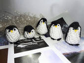 Little Penguin Gang