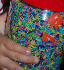 Ispy Sensory Jar