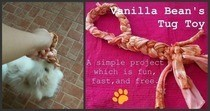 Diy Tug Toy For Vanilla Bean