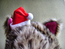 No Sew Mini Santa Hat