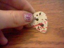 Paint Slapter Guitar Picks