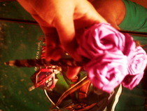 Ribbon Rose Pen's