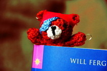 Pirate Bear Bookmark