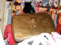 My Lovely Golden Suitcase