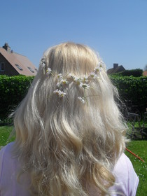 Daisy Chain