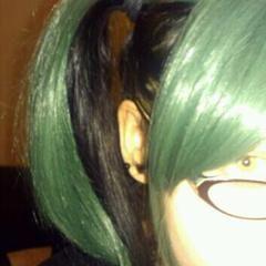 Wiglet/Hair Topper