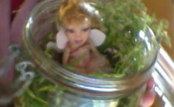 Fairy In A Jar!!!!