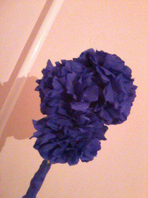 Tissue Paper Flowers   Graduation Gift For My Cousin