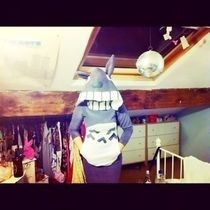Totoro Costume/Hoodie