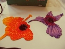 Hummingbird &amp; Flower Patches