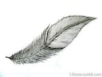Wanna Draw  A Feather?