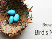 Medium_brown-bag-bird_s-nest