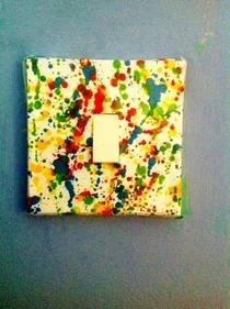 Splat Light Switch Cover
