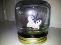 Tree Spirit's In A Jar
