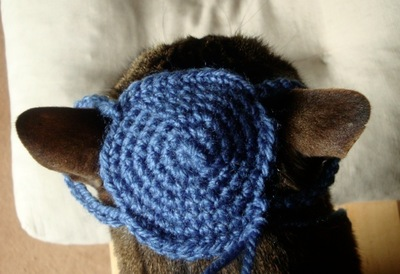 How to make a pet hat. Crochet Cat Beanie  - Step 2