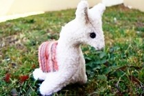 Little Llama