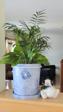 Flower/Plant Pots From Re Purposed Frozen Yogurt/Ice Cream Containers