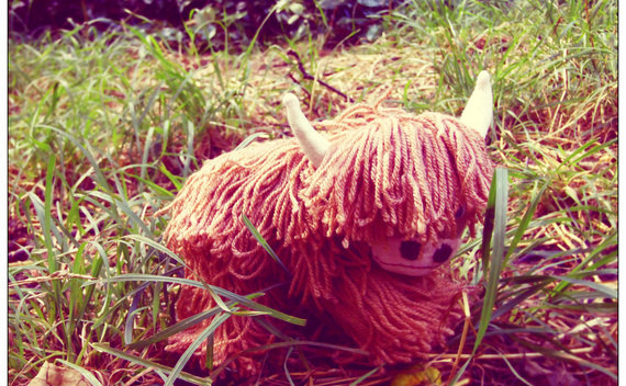 Highland Cow Sock Animal