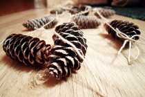 Christmas Garland From Cones